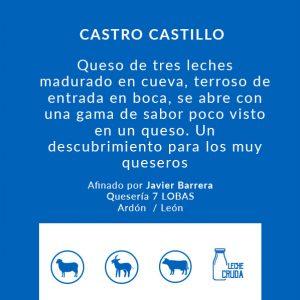 castro-castillo_Queso_artesanal_Alicante_Latrampadelraton_Comprar